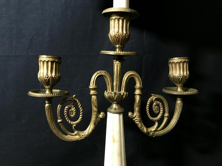 Pair of Lion Footed Brass & Marble Lamps