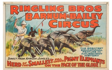 Ringling Brothers and Barnum & Bailey. Herd of the