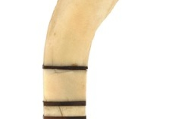 WHALE IVORY PIE CRIMPER Pistol grip handle constructed from five pieces of whale ivory separated by four shell bands. Handle termina...