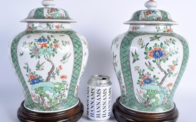 A PAIR OF 19TH CENTURY CHINESE FAMILLE VERTE VASES AND