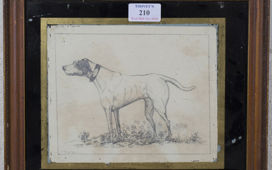 J. Webb - Study of a Hound wearing a Collar inscribed 'E. Bell 1794', pencil drawing, 16cm x 20cm, w