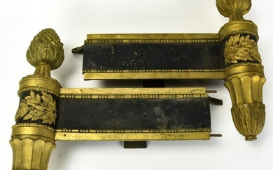 Pair Antique Neoclassical & Patinated Chenets