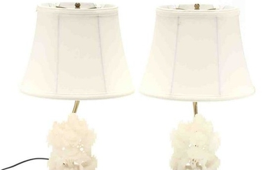 Pair of Chinese Lighted Soapstone Table Lamps