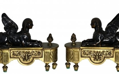 Pair of Empire Gilt and Patinated Bronze Chenets