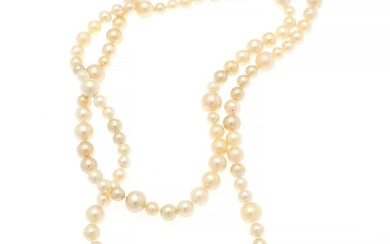 Hartmann's: A long South Sea pearl necklace set numerous with cultured golden South Sea pearls. Pearl diam. app. 9.0–14.5 mm. L. app. 130 cm.