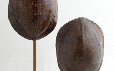 Two Louisiana Turtle Shells, one on an iron and spelter