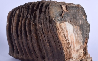 A LARGE EARLY MAMMOTH TOOTH SCHOLARS ROCK. 20 cm x 16 cm.