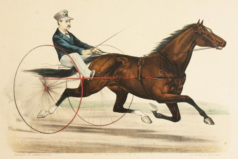 'St Julien'. A Scene of a Racing Horse and Carriage, a