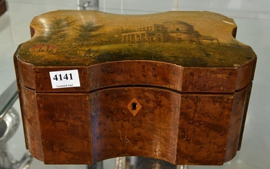 A 19TH CENTURY FRENCH HAND PAINTED TEA CADDY IN BURR WALNUT (KEY IN OFFICE) (some losses)