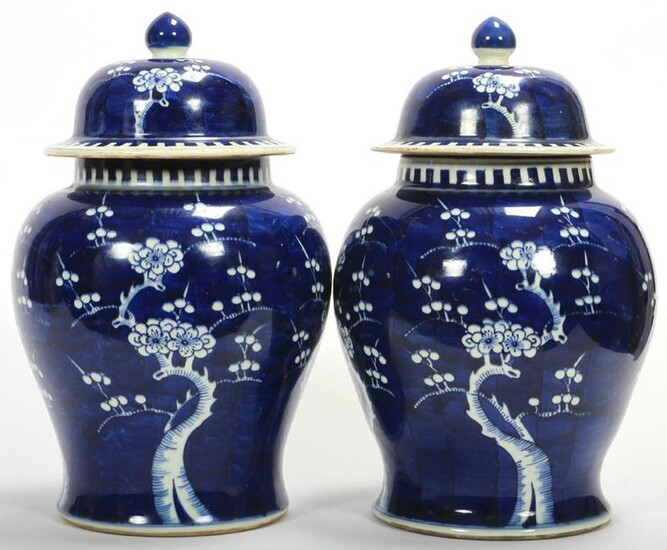 CHINESE BLUE AND WHITE PORCELAIN COVERED JARS