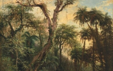 Henry Cleenewerck (1818-1901), The Cuban Rainforest