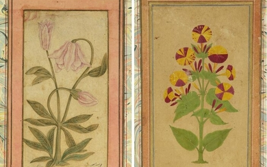 TWO MINIATURES DEPICTING FLOWERS, INDIA, DECCAN