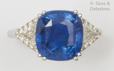 White gold ring set with a cushion sapphire set with two troïdia diamonds surrounded by smaller brilliant-cut diamonds.