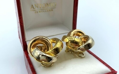 A Pair Of 18ct Earrings In 3 colours Gold 13.2g