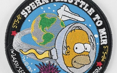 Space Shuttle Homer Simpson Biorack Patch