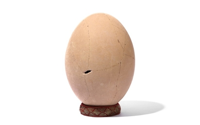 AN ELEPHANT BIRD EGG, MADAGASCAR, PRE 17TH CENTURY