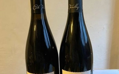 2013 Cécile Tremblay Feusselottes - Chambolle Musigny - 2 Bottles (0.75L)