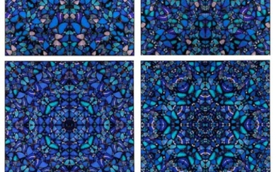 DAMIEN HIRST | THE ASPECTS (H6-1-5)