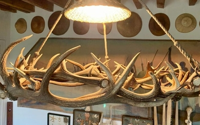 Suspension consisting of an entanglement of deer trophies....