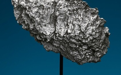 DRONINO METEORITE — EXOTICA FROM OUTER SPACE, Iron, ataxite (ungrouped) Ryazan district, Russia