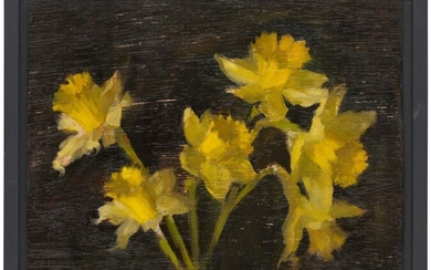 Sophie M Cook, 2020, Daffodils