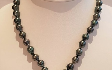 Peacock Tahitian pearls necklace in 925 silver