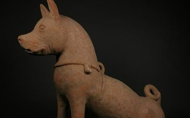 RARE CHINESE HAN DYNASTY GUARDIAN DOG - TL TESTED