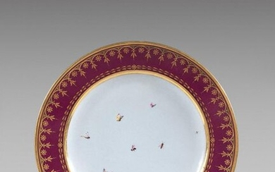 SÈVRES Hard porcelain plate from the service fond purple, Views...