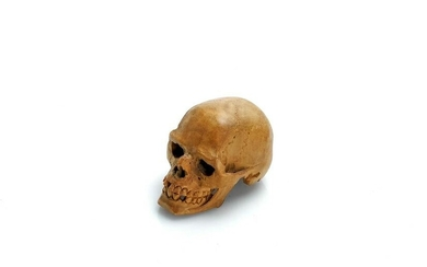 Antique Carved Wood Skull