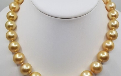 NO RESERVE PRICE - 18 kt. Yellow Gold - Large 12x16mm Round Golden South Sea Pearls - Necklace