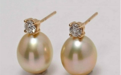 14 kt. Yellow Gold - 8x9mm Golden South Sea Pearl Drops