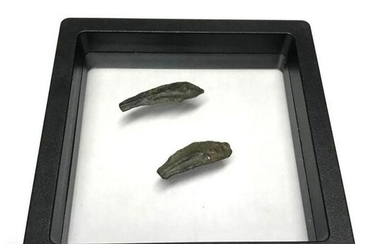Pair of Ancient Greek Dolphin Bronze Coins, Artifacts