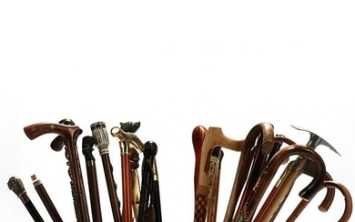 (27) Vintage Canes and Walking Sticks