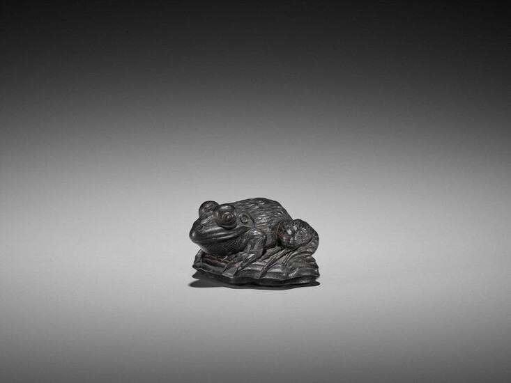 AN IMPORTANT EBONY WOOD NETSUKE OF A FROG ON DRIFTWOOD ATTRIBUTED TO SEIYODO TOMIHARU