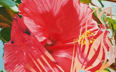 MORE POINTS ON THE EDGE OF THE BLOSSOM, James Rosenquist