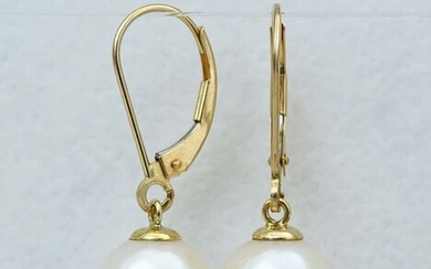 No Reserve Price - South sea pearls, Top Grade 9 -9.5 mm - Earrings, 14 kt. Yellow Gold