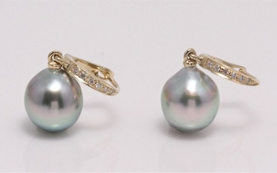 No reserve price - 14 kt. Yellow Gold - 9x10mm Tahitian Pearl Drops - Earrings - 0.09 ct