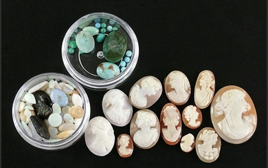 A Collection of Unmounted Carved Shell Cameos.
