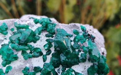 Dioptase Crystals on matrix - 12×8.5×8 cm - 600 g
