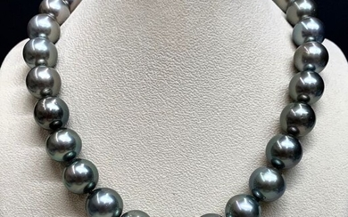 18 kt. Tahitian pearls, White gold, 15-16,8 mm - Necklace