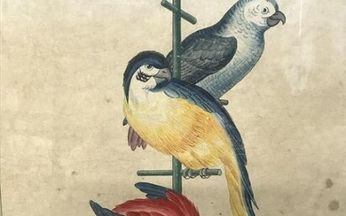 Chinese Watercolor Painting Parrots