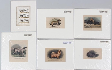 Group of (6) hand colored engravings of dogs and cats, 19C. FR3SH.