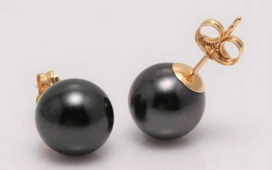 9x10mm Black Tahitian Pearls - Earrings