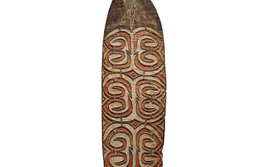 Asmat Shield, Citak Region, Western Papua New Guinea