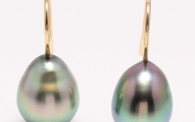 United Pearl - 18 kt. Yellow Gold - 10x11mm Peacock Tahitian Pearl Drops - Earrings