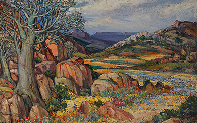 Hugo Naudé South African 1868–1941 Namaqualand flowers and quiver tree oil on canvas signed bottom left 61