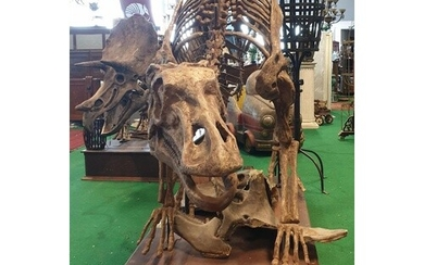 A very large prop of a life size Maiasaura Dinosaur on a pli...