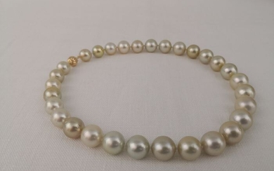 18 kt. Golden south sea pearls, 12.5-15 mm Round - Necklace