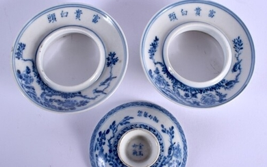A PAIR OF 19TH CENTURY CHINESE BLUE AND WHITE PORCELAIN TEAB...
