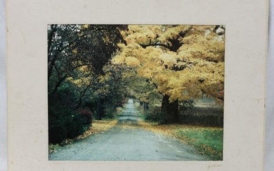 Old Color Photograph Signed